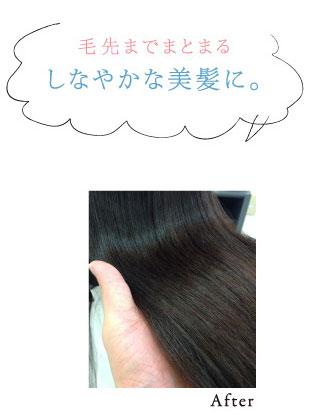 毛先までまとまるしなやかな美髪に。